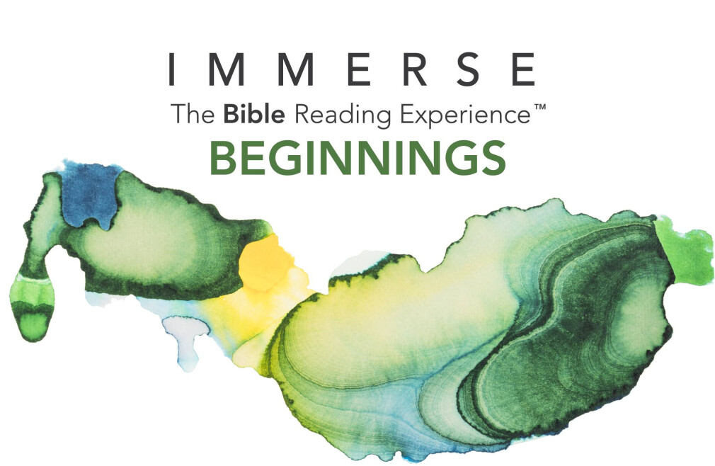 Beginnings Immerse Reading Experience