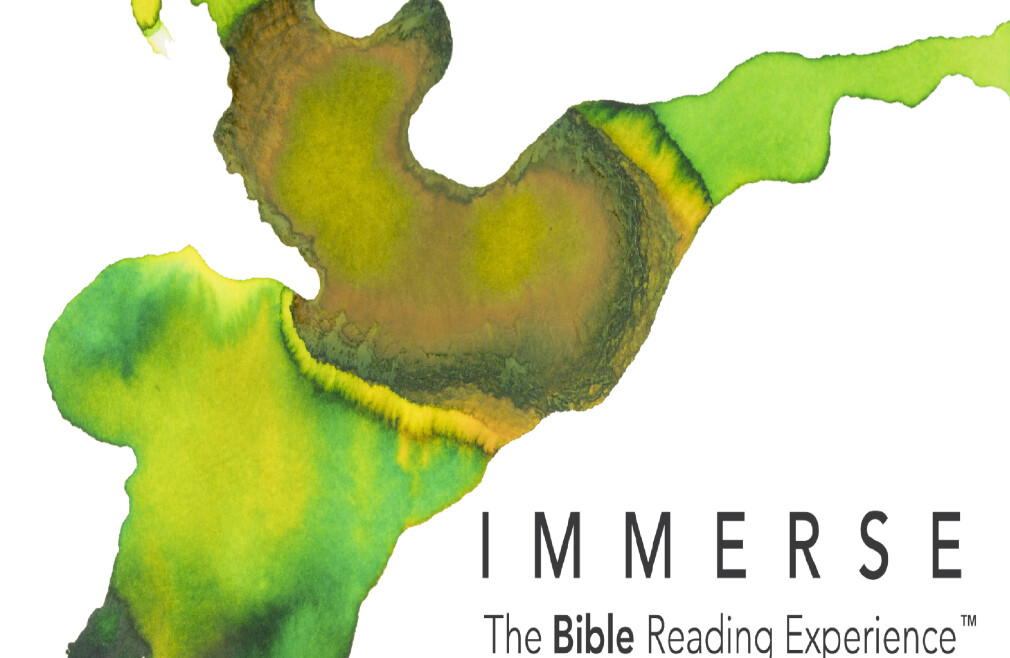 Immerses Bible Reading Experience - Chronicles
